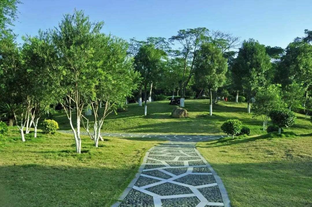 喀什园林绿化价格,喀什园林绿化哪家好